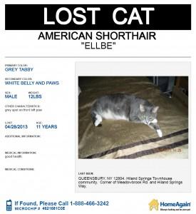 ELLBE-CAT6-10-2013