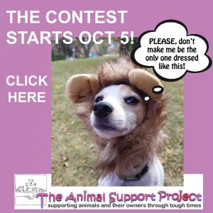 TASP Critter-Crazy Happy Howl-o-ween Costume Contest Photo Submission Period